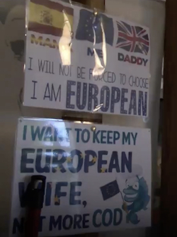 "Two hand-made signs on the wall of a house, one of which shows the Spanish, EU and British flags with the words ""Mamá, Me, Daddy"" under them respectively, followed by ""I will not be forced to choose, I am European"". The second says ""I want to keep my European wife, not more cod"" with a cartoon image of a fish."