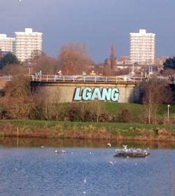 "Picture of a water treatment works with the tag ""LGANG"" sprayed on a large round building, with three tower blocks in the background and a lake, with swans swimming, in the foreground"