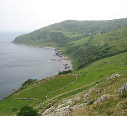 Picture of hills sloping down towards a small bay, with trees near the sea in the background and rocks poking through the grass in the foreground.