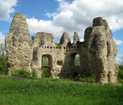 The ruins of Odiham Castle, which dates from the 13th century