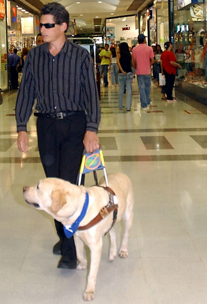A picture of a man wearing dark glasses, black trousers and a dark blue and black striped shirt being led by a guide dog through a shopping centre.