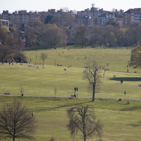A picture of a public park with people spread out thinly in small numbers. In the background are some trees and there are blocks of flats on the hillside behind.